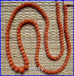 Ancien Rang Perle Corail Pas Collier Bijou Antique Orange Coral Bead No Necklace