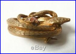 Broche serpent avec pierre saphiret Bijou ancien brooch snake vers 1900